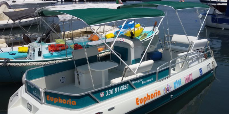 Pontoon Boat Euphoria